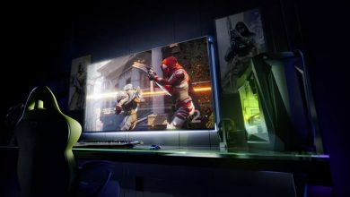 Nvidia BFGD